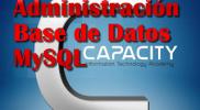curso profesional de base de datos mega español